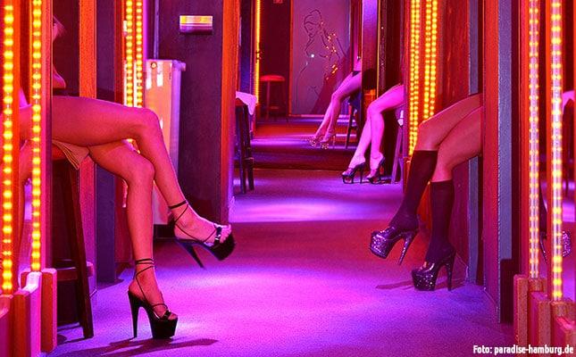 Politiker fordern erneut Prostitutionsverbot
